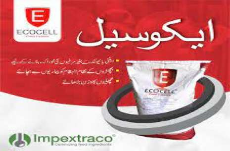 Ecocell!