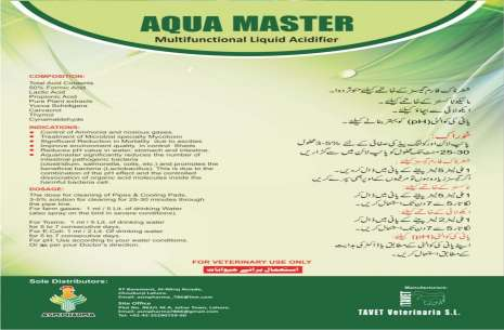 Aqua Master!