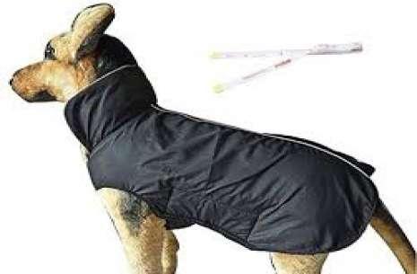 Dog Jacket M!