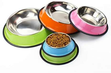 Colored Stainless Steel Pet Bowl for Dogs!