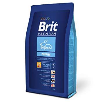 brit!