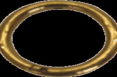 Bull Nose Ring Golden!