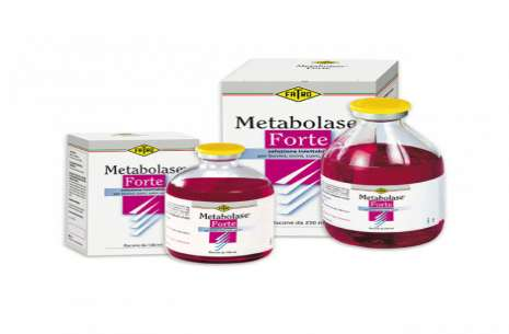 Metabolase Forte Injection 100 ml!