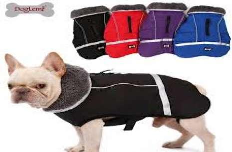 Dog Jacket S!