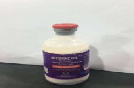 Aftovac Oil – 50 ml!