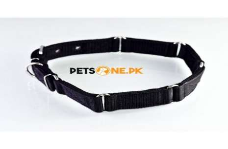 Strong Grip Better Dog Control Collar for Large Do!