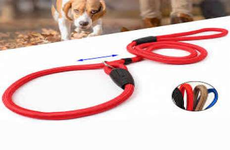 Adjustable Strap Leash for Puppies!
