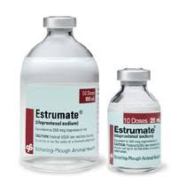 Estrumate injection!