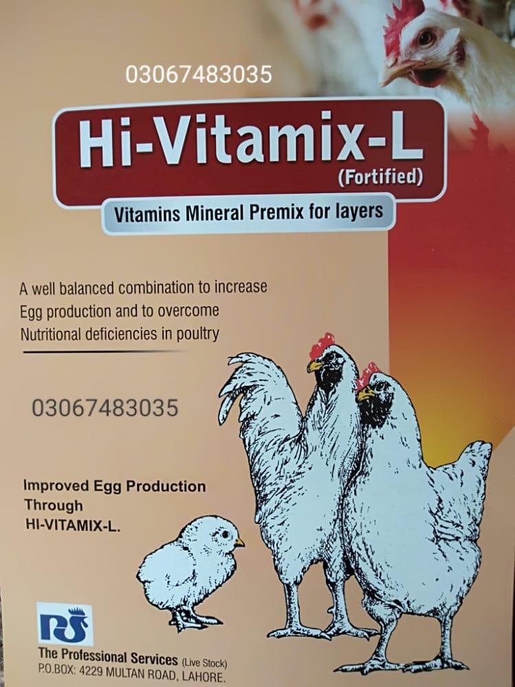 Hi-Vitamix-L FORTIFIED!