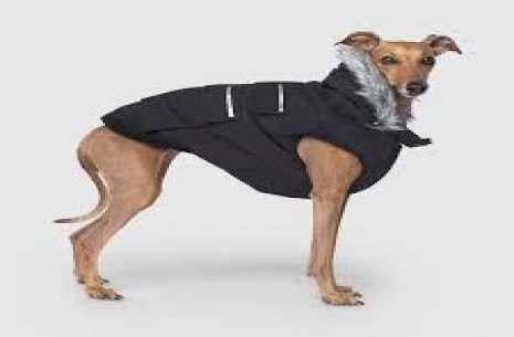 Dog Jacket Ex S!