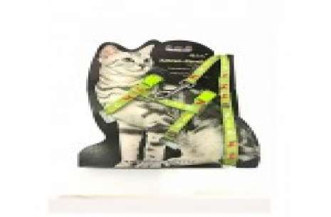 Cat Harness With Leash!