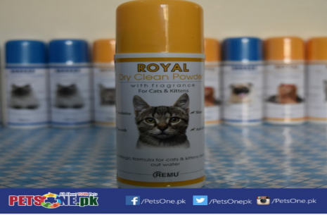Remu Dry Clean Powder – For Cats n Kittens!