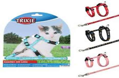 Trixie Kitten Harness with Leash!