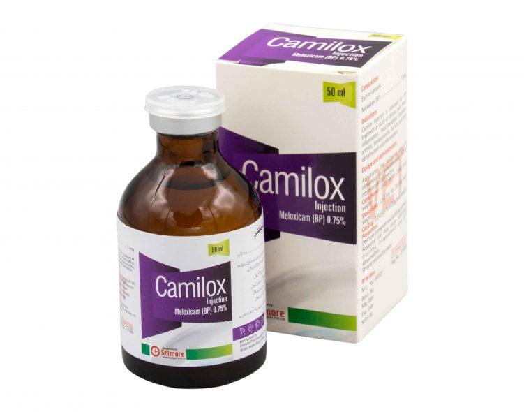 Camilox!