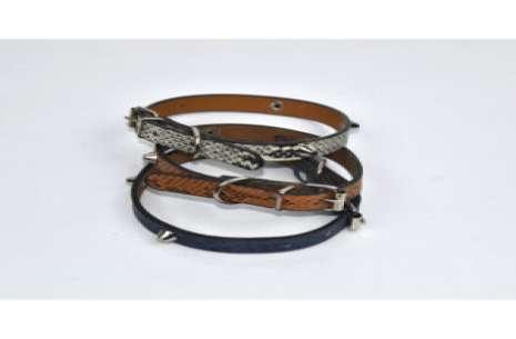Dog Collar ( W Shape)!