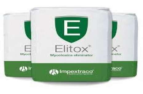 ELITOX!