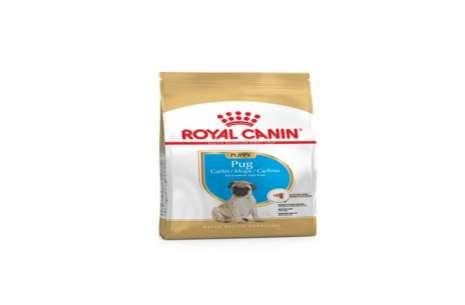 Royal Canin Pug Junior/Puppy – 1.5 Kg!