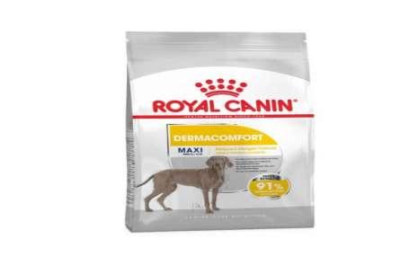 Royal Canin Maxi Dermacomfort – 10 KG!
