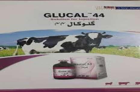 Glucal 44!