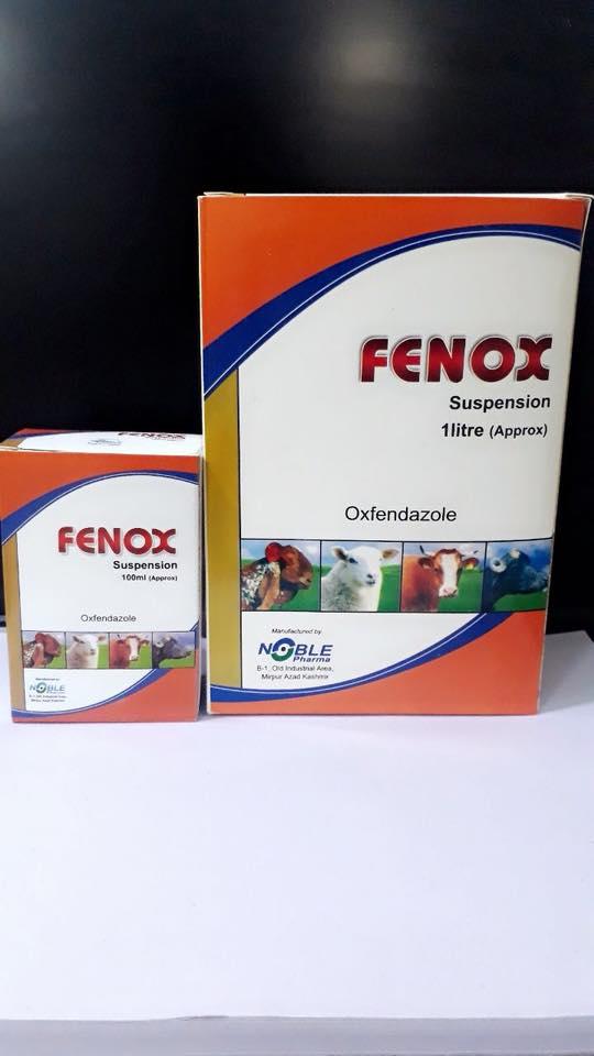 Fenox Suspension!