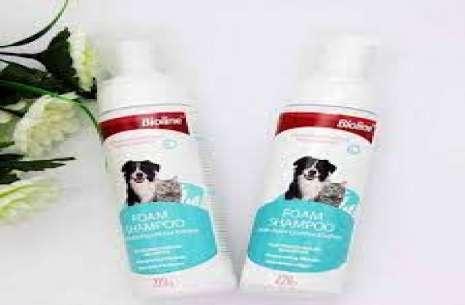 Bioline Foam Shampoo!