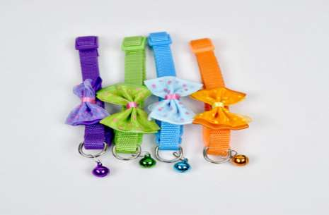 Bow Collar for Puppies!