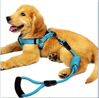 nylon harness rope!