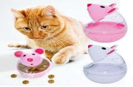 cat treat toy!