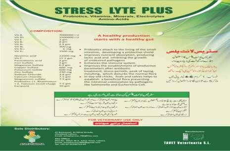 Stress Lyte Plus!