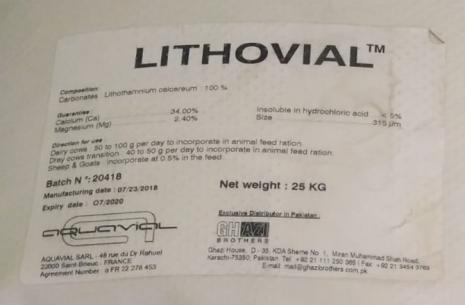 Lithovial!