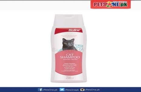 Bioline Cat Shampoo 250 ML!