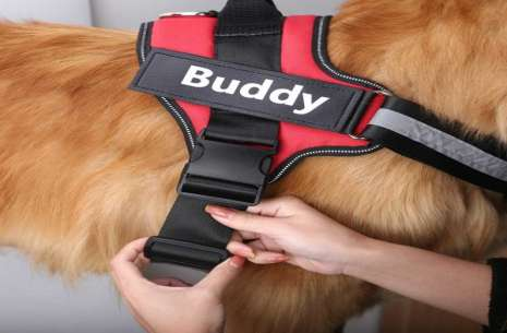 Dog Police Chest Harness / Chest Wrap!