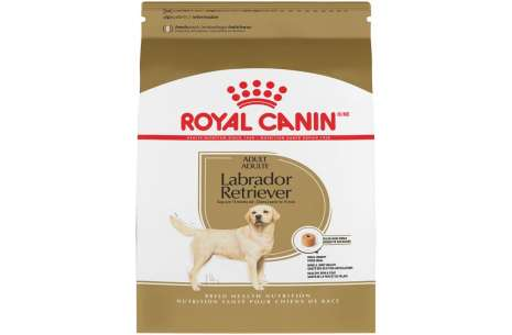 Royal Canin Labrador Adult Dog Food!