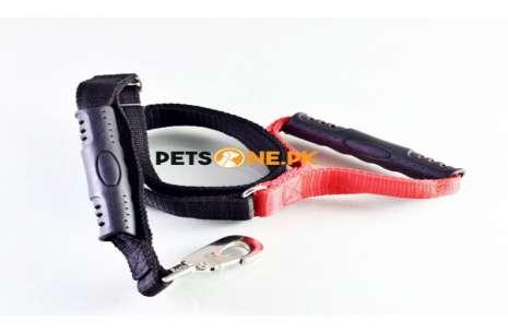 Dual Handle Nylon Belt Leash 5 feet Adjustable!