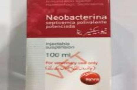 Hsv Neobacterina!