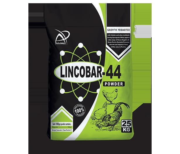 LINCOBAR-44!