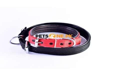 Nylon Dog Collar with Soft Padding!
