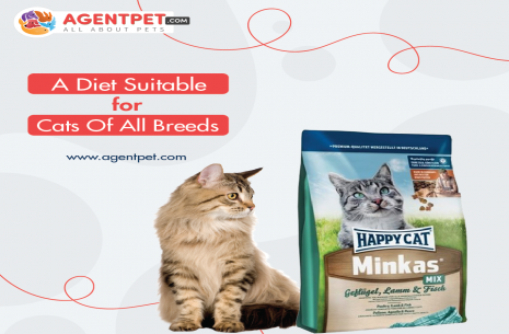 Happy Cat Food – Minkas Mix!