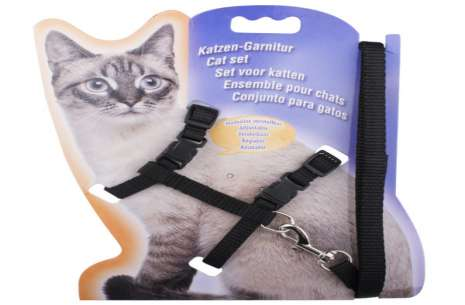 Pawline Cat Harness and Leash!