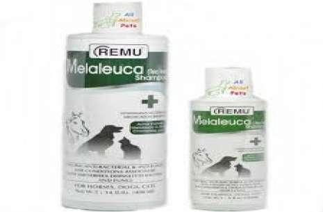 Melaleuca tea tree shampoo 500ml!
