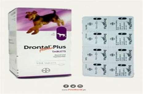 Drontal Plus!