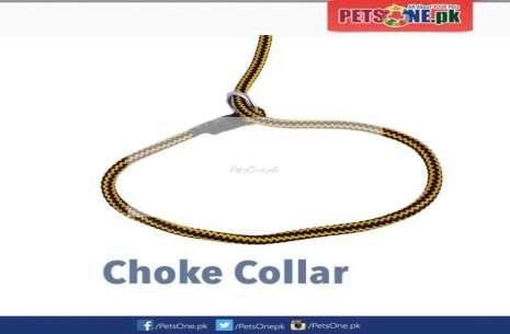 Adjustable Nylon Dog Training Leash!