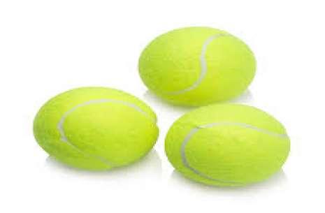 Dog Training Ball L!